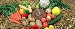 Gemüsevielfalt aus dem eigenen Garten oder der nahen Umgebung bringt hohe Lebensqualität und Unabhängigkeit
